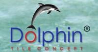 Dolphin Tiles Concept