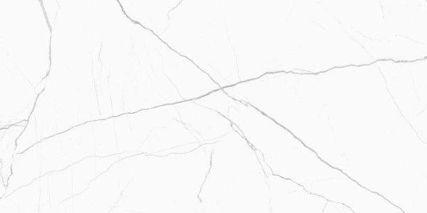 - 600 x 1200 mm ( 24 x 48 inch ) - Glint Statuario Spider