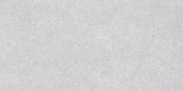 - 600 x 1200 mm ( 24 x 48 inch ) - APOLLO GRIS