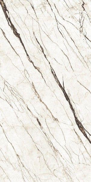Porcelain Tiles | PGVT & GVT - 600 x 1200 mm ( 24 x 48 inch ) - RAMO MISTO