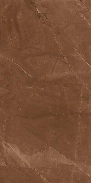 Armani brown-01