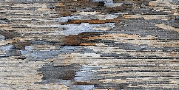 Ceramic Floor Tiles - 600 x 1200 mm ( 24 x 48 inch ) - 1238